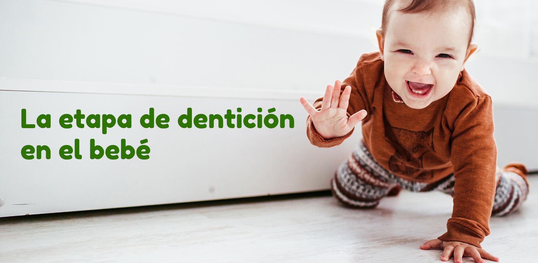 La-etapa-de-denticion-dientes-en-el-bebe